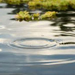 Pengolahan Air Limbah di Jakarta